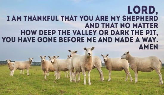 I am thankful that you are my shepherd! ecard, online card