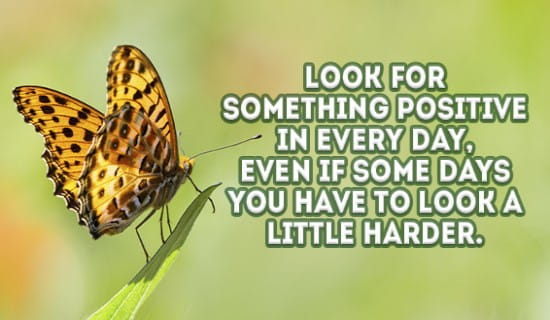 Look for something POSITIVE :D ecard, online card