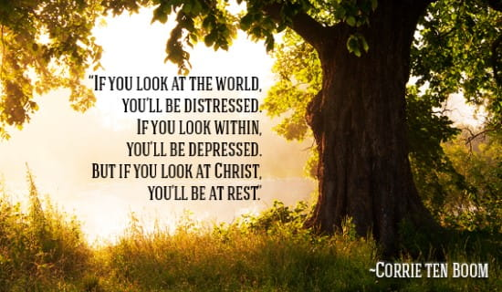If you look at the world, you'll be distressed, but not if you look at Christ! ecard, online card
