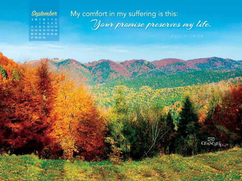 September 2015 - Psalm 119:50 mobile phone wallpaper