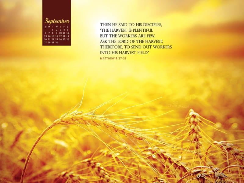 September 2015 - Matthew 9:37-38 mobile phone wallpaper