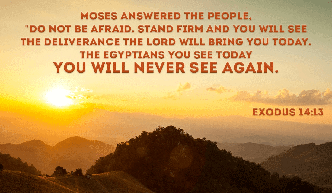 Exodus 14:13 ecard, online card