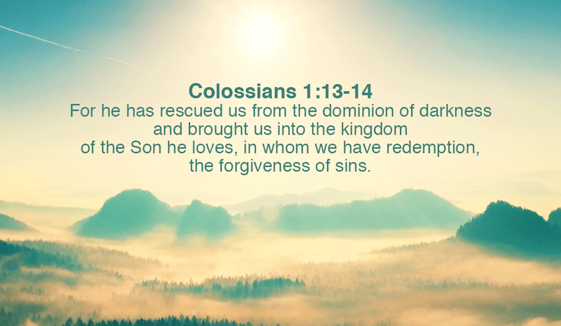 He has brought us out of the darkness! Thank you Lord! -Colossians 1:13-14 ecard, online card