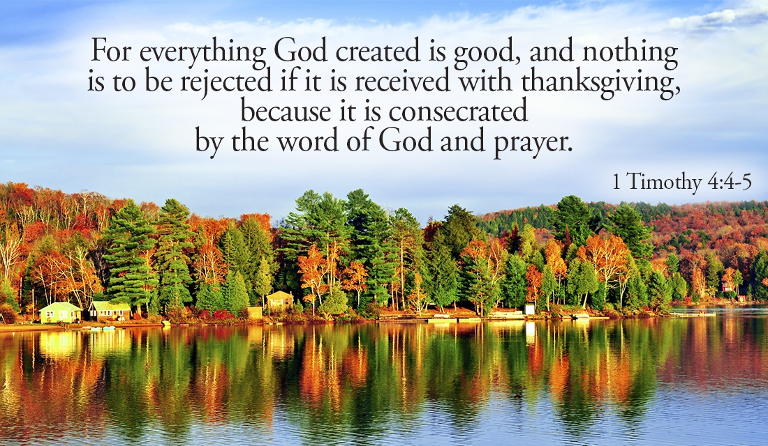 What are you thankful for? - 1 Timothy 4:4-5 ecard, online card