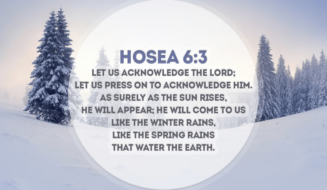 He will come back, as surely as the sun rises! - Hosea 6:3 ecard, online card