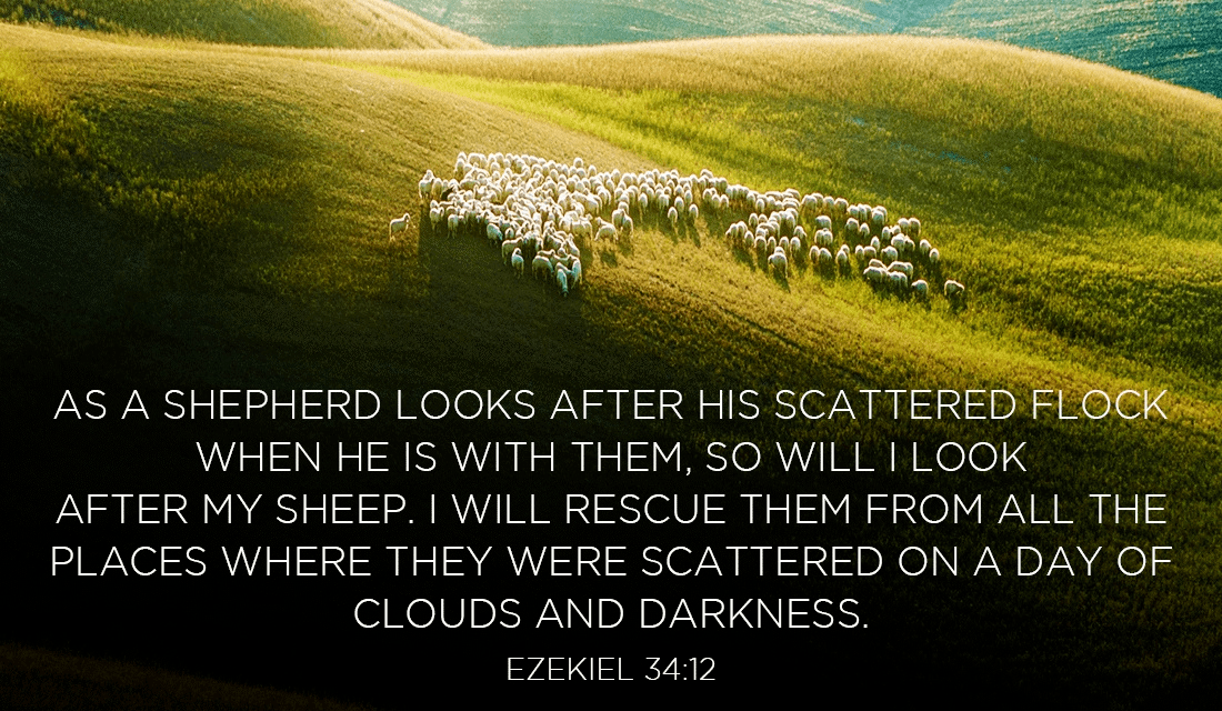 God is always looking out for you! - Ezekiel 34:12 ecard, online card