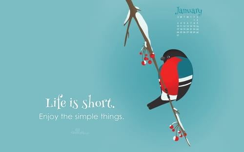 January 2016 - Life is Short mobile phone wallpaper