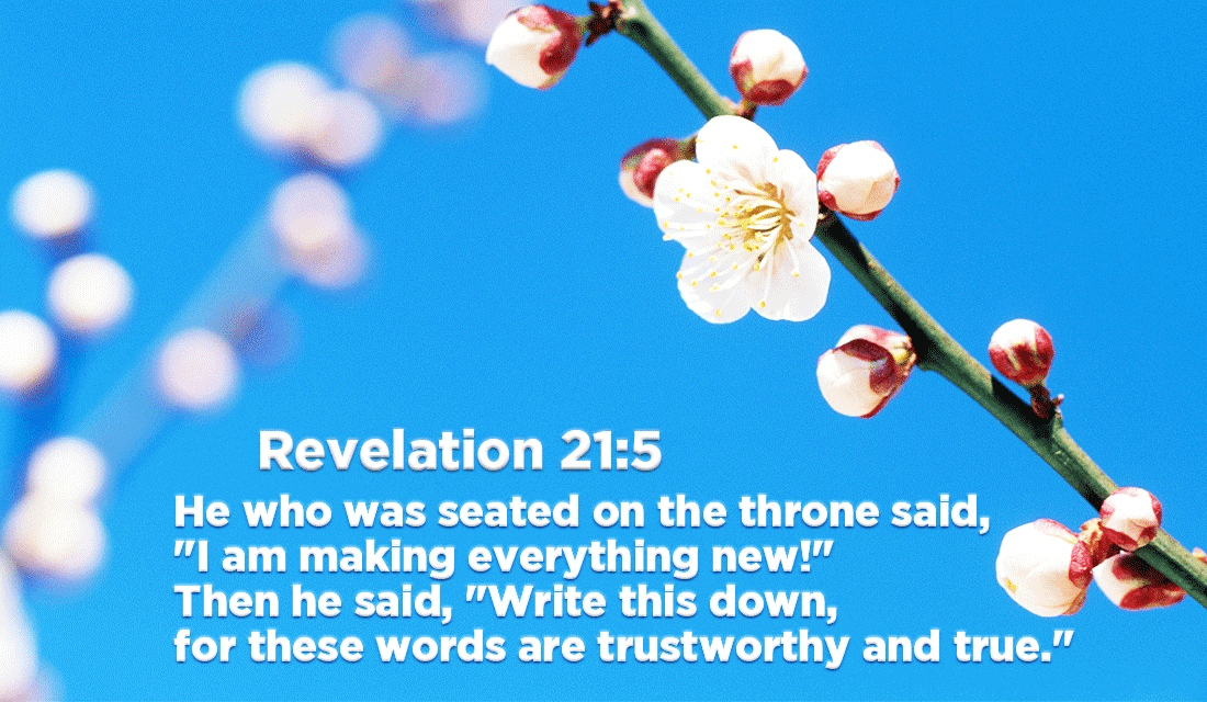 Make new things this year! - Revelation 21:5 ecard, online card