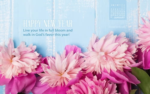 January 2016 - Live in Full Bloom mobile phone wallpaper