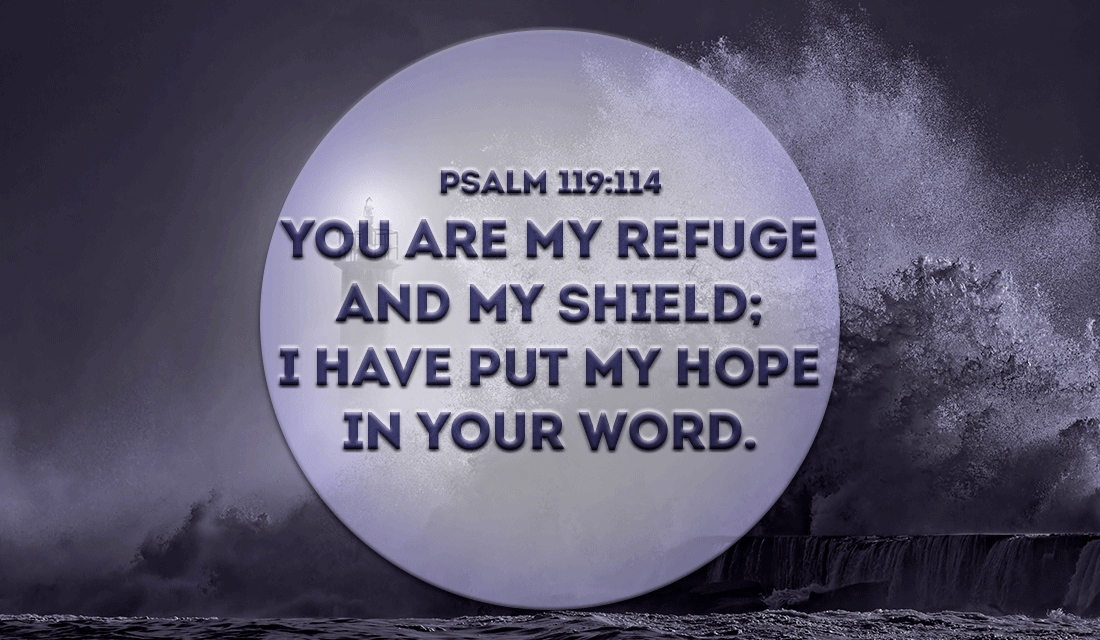 Thank you for protecting me Lord, Amen - Psalm 119:114 ecard, online card