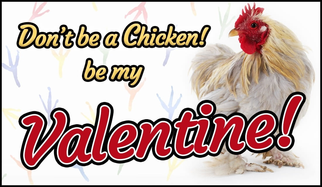 Don't Be a Chicken! Be My Valentine ecard, online card