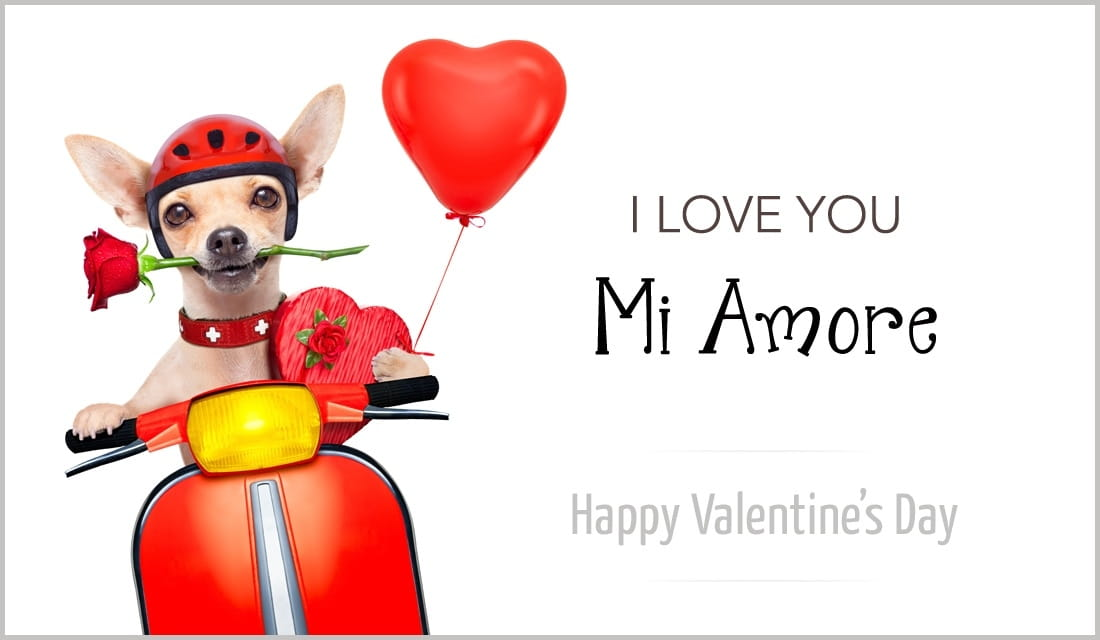 Love You - Mi Amore eCard - Free Valentine\'s Day Cards Online