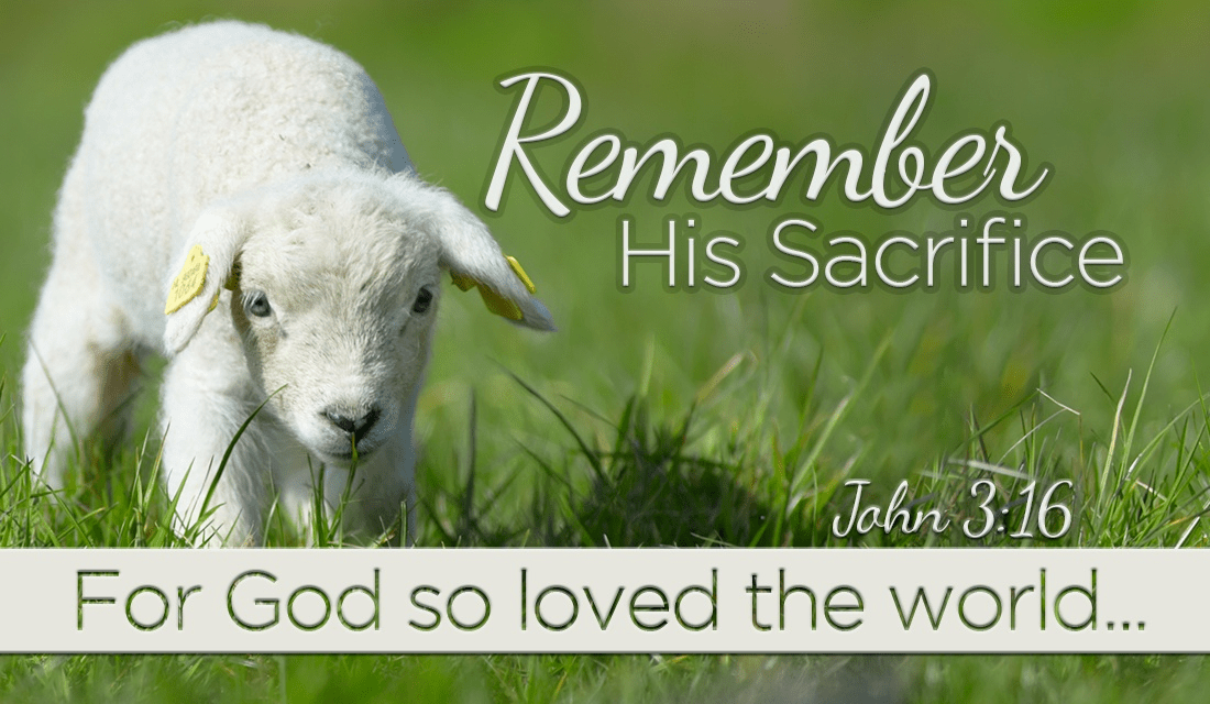 He was GOD's lamb, given for us. ecard, online card