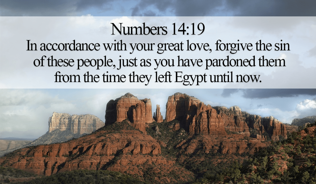 God has pardoned many people, learn from Him! - Numbers 14:19 ecard, online card