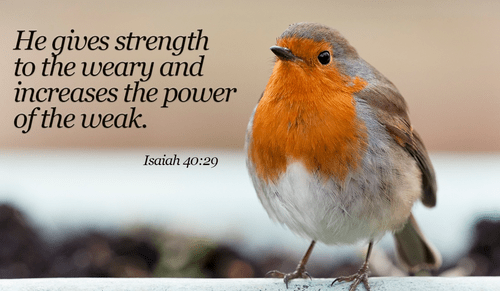 20 Bible Verses About Strength Powerful Scripture Quotes Updated