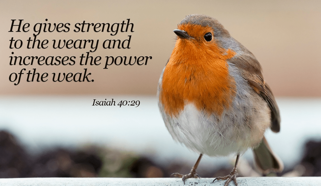 He WILL make you strong, believe in Him! - Isaiah 40:29 ecard, online card