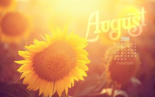 August 2016 - Sunflower mobile phone wallpaper