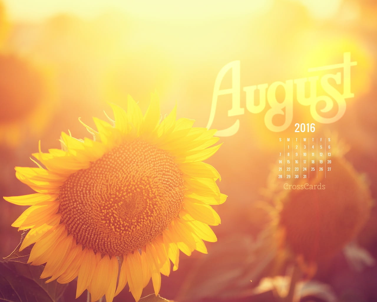 Desktop Calendar Wallpaper With Reminder : August sunflower desktop calendar free