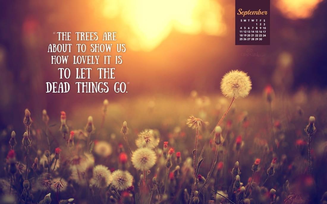 September 2016 - Let Things Go mobile phone wallpaper