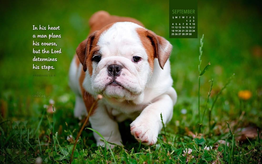 September 2016 - Proverbs 16:9 mobile phone wallpaper