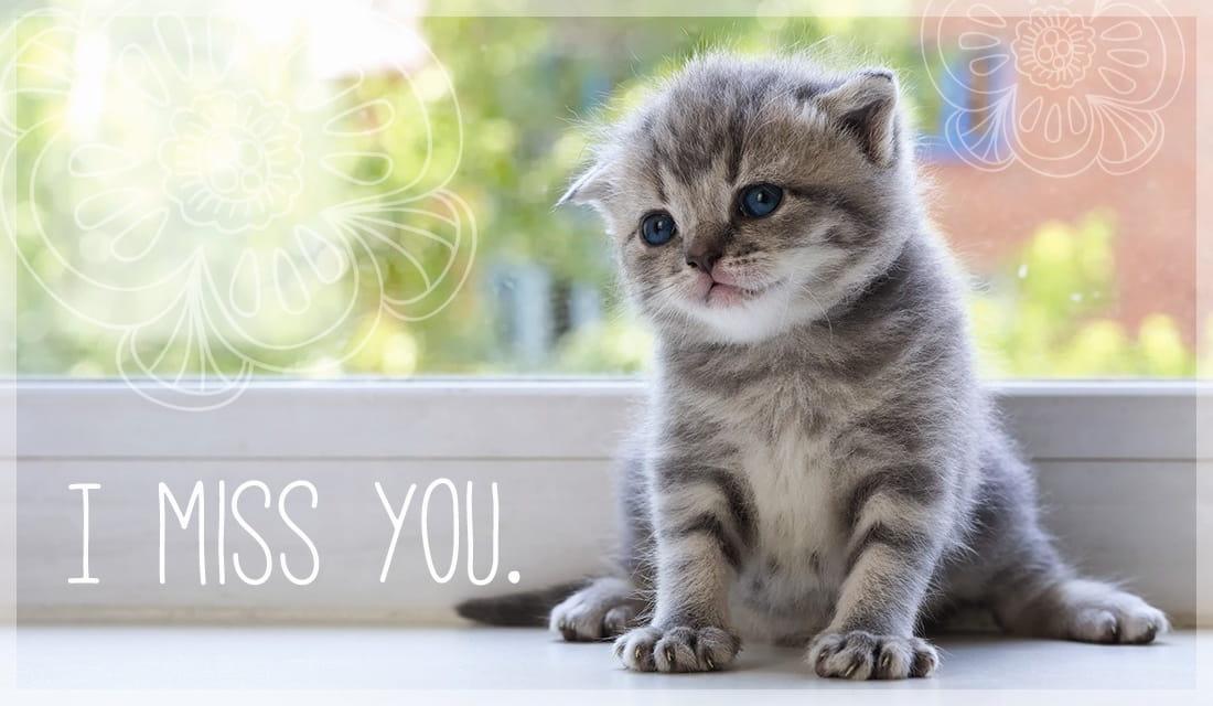 I Miss You ecard, online card