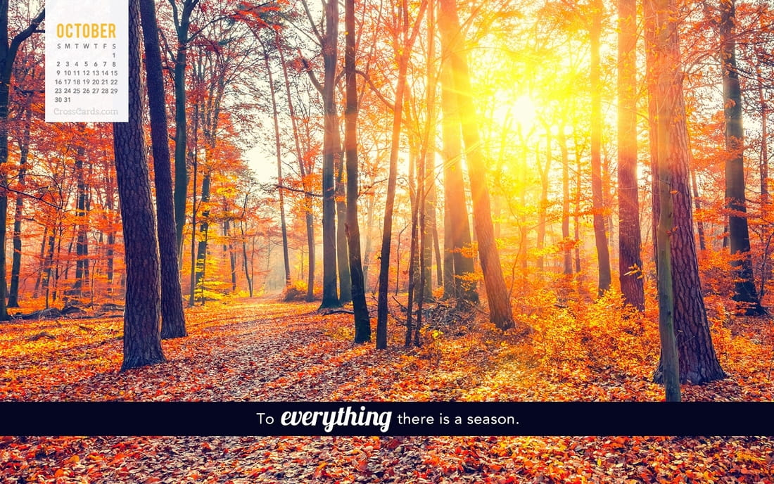 October 2016 - To Everything there is a Season mobile phone wallpaper
