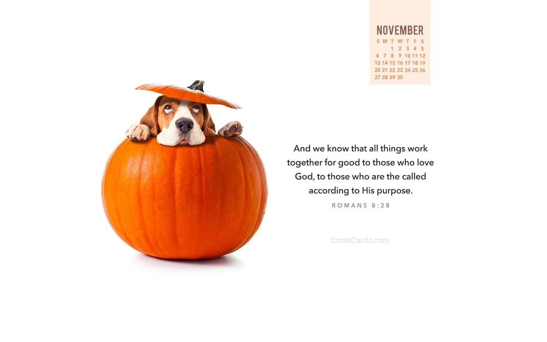 November 2016 - Romans 8:28 mobile phone wallpaper