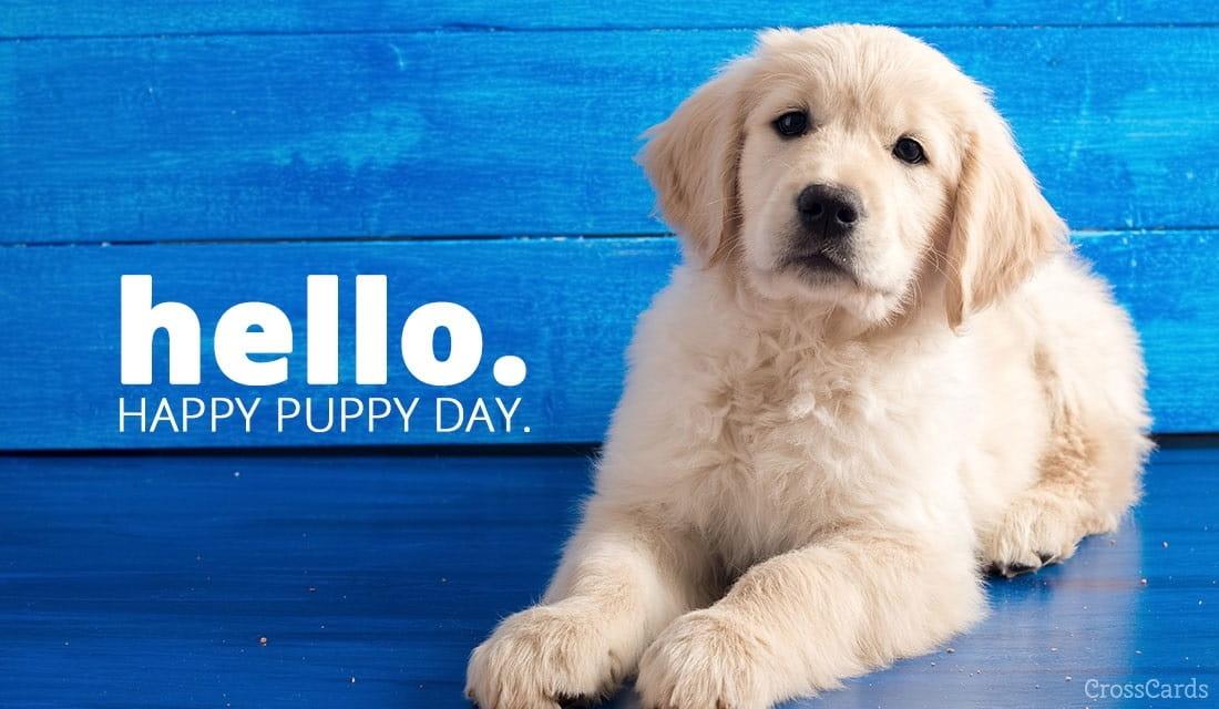 Happy Puppy Day! (3/23) ecard, online card