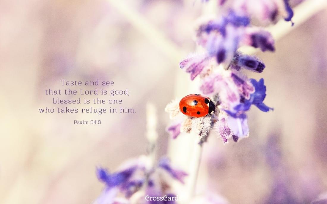 Psalm 34:8 mobile phone wallpaper