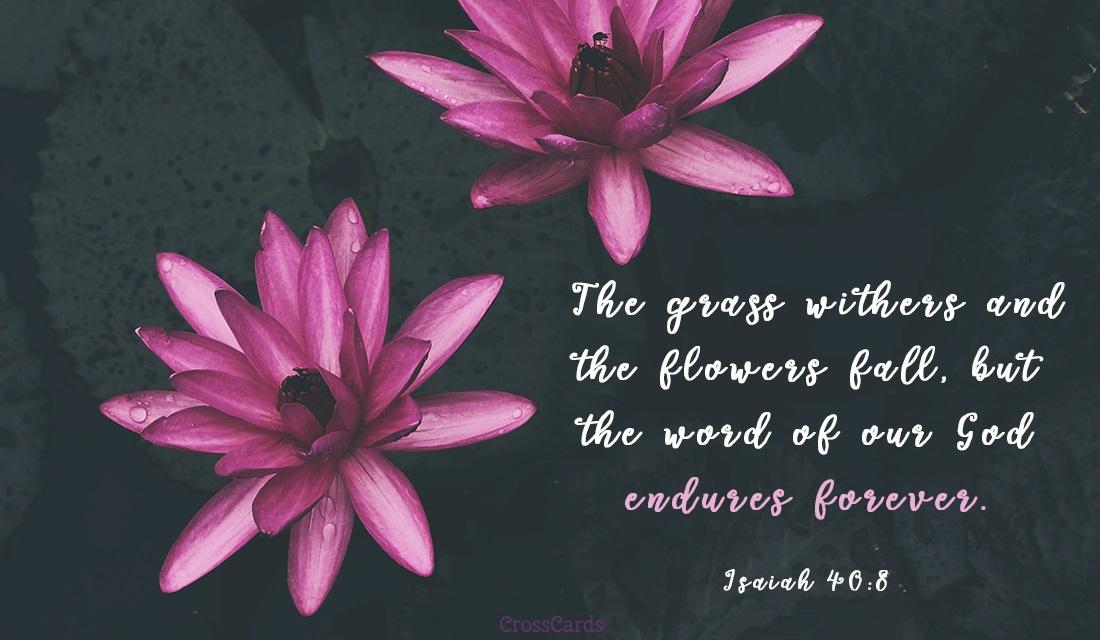 Isaiah 40:8 ecard, online card