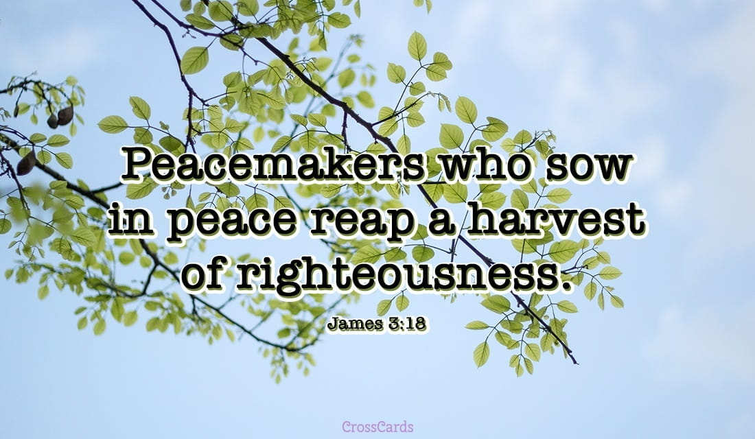 James 3:18