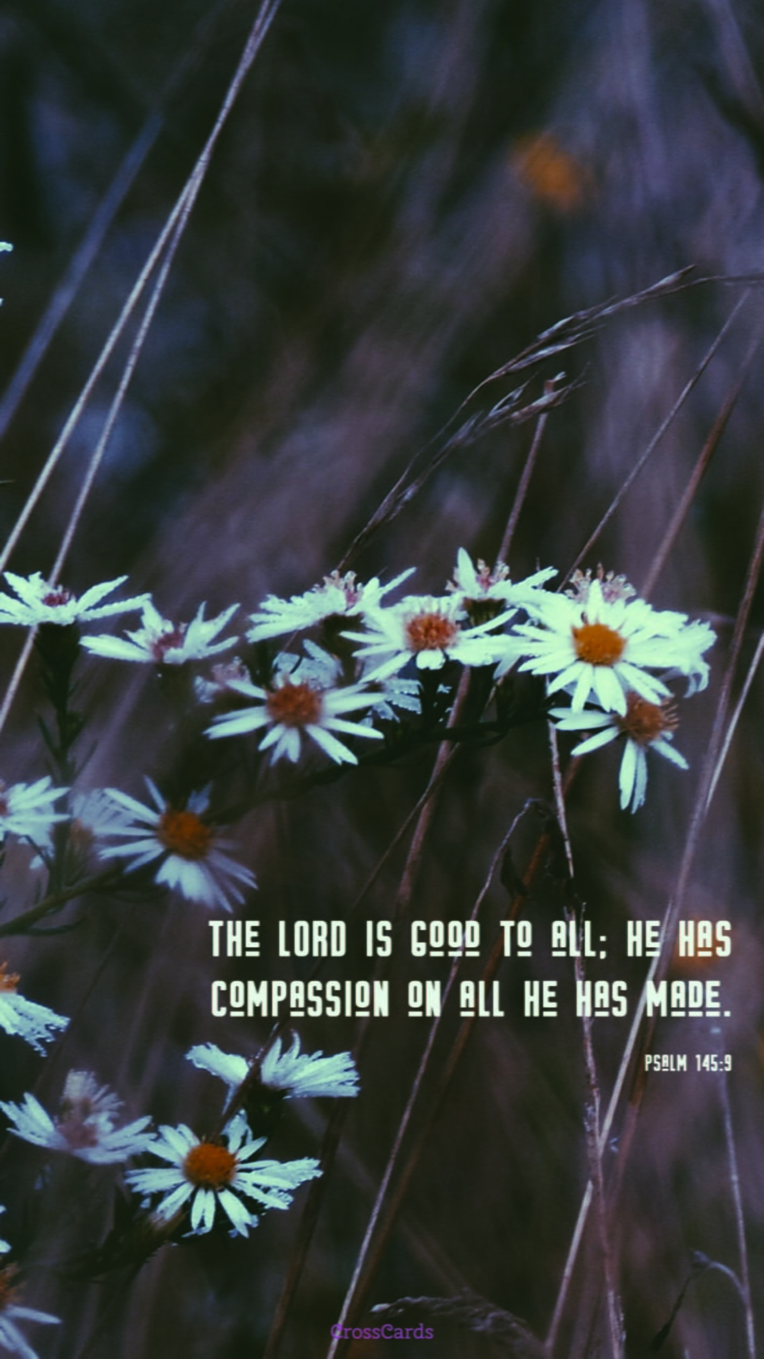 Psalm 145:9 mobile phone wallpaper