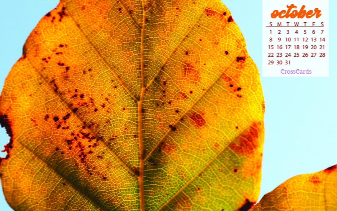 October 2017 - Fall Leaf mobile phone wallpaper