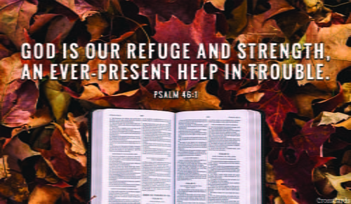 Psalm 46:1 - NIV Bible - God is our refuge and strength, an