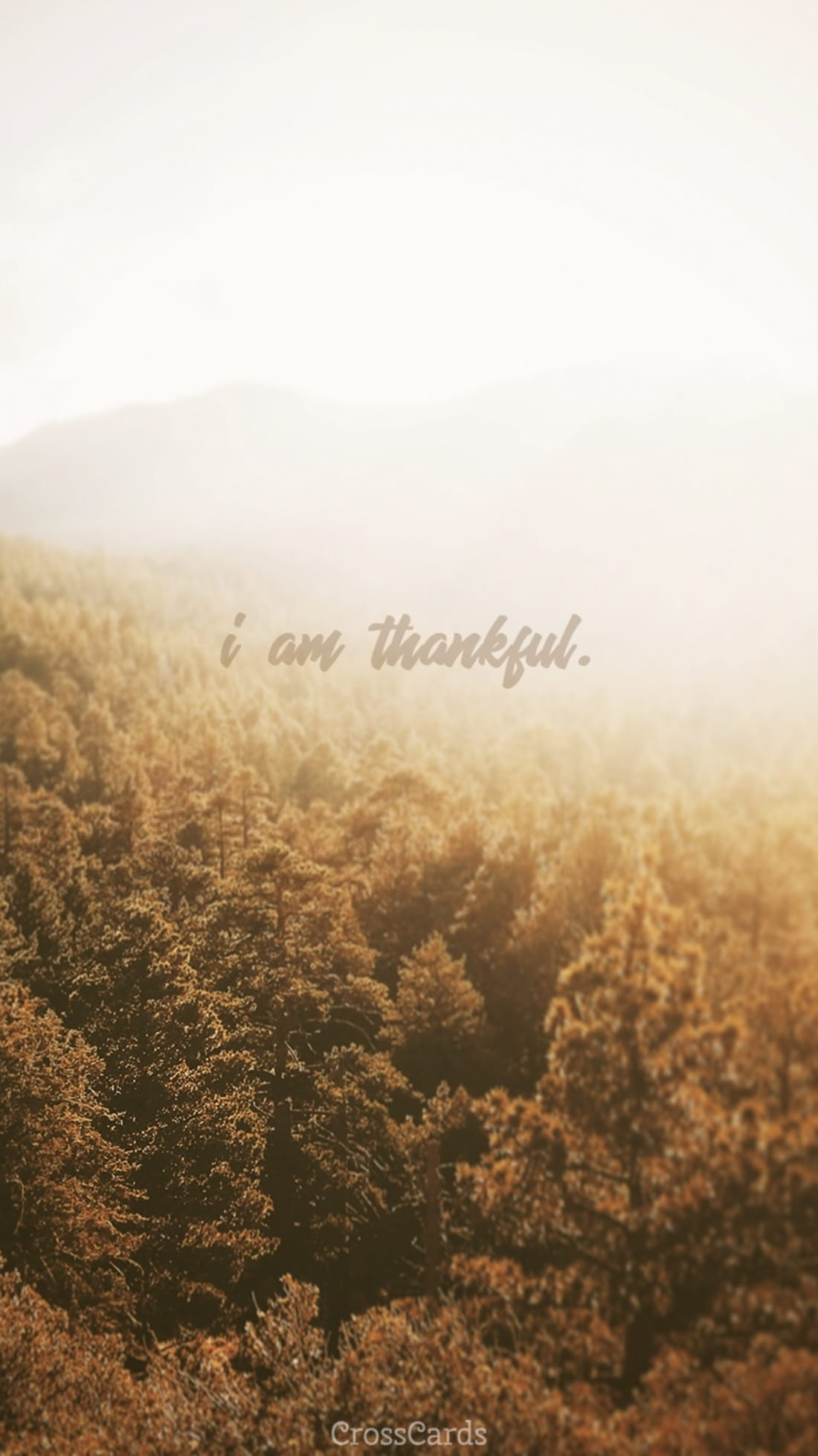 I Am Thankful mobile phone wallpaper