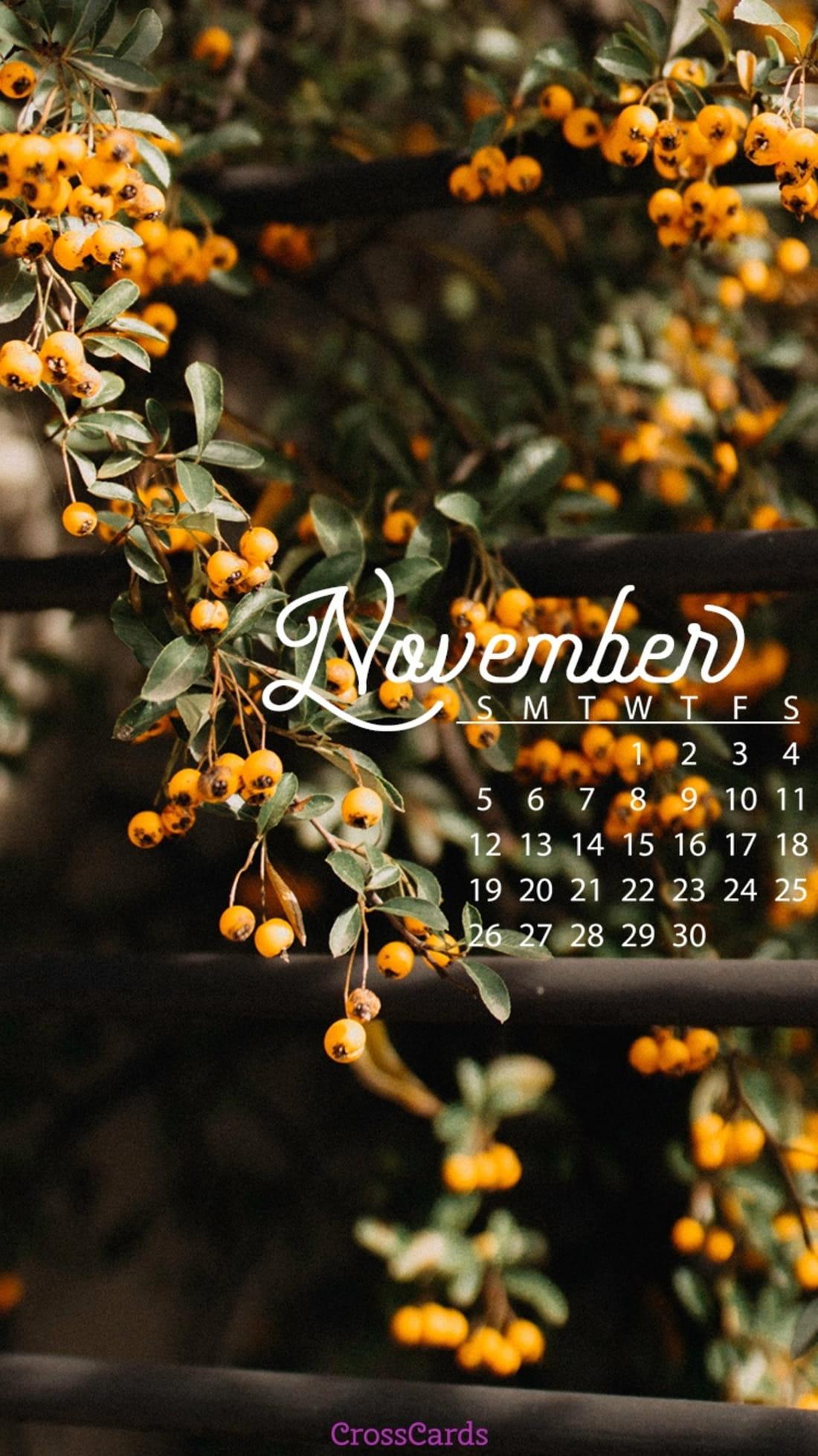 November 2017 - Fall Berries mobile phone wallpaper