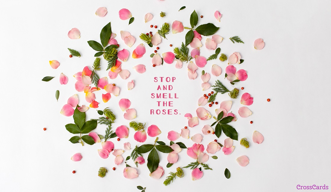 Stop and Smell the Roses ecard, online card