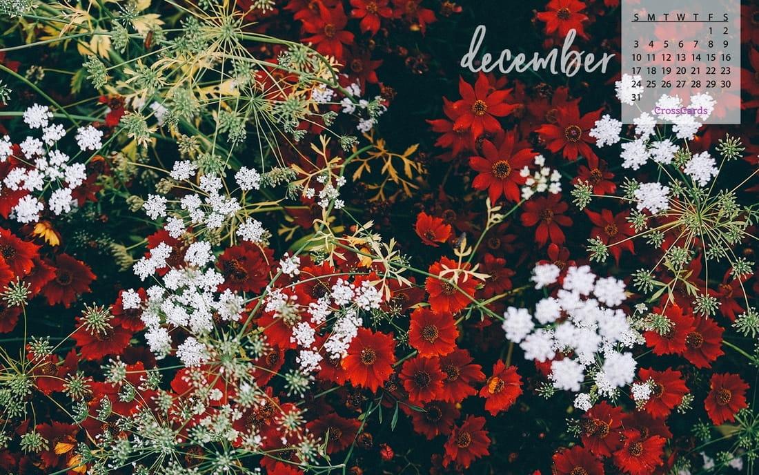 December 2017 - Winter Flowers mobile phone wallpaper