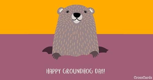 Happy Groundhog Day! (2/2) ecard, online card