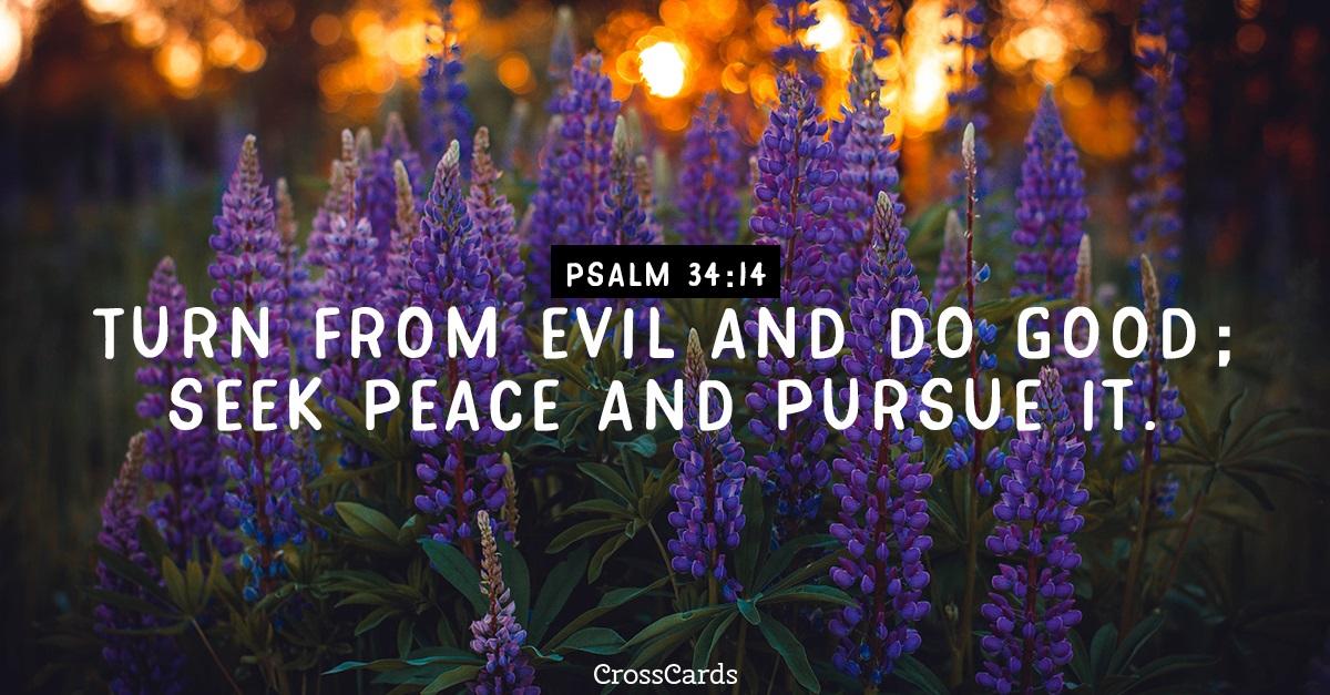 Psalm 34:14 ecard, online card
