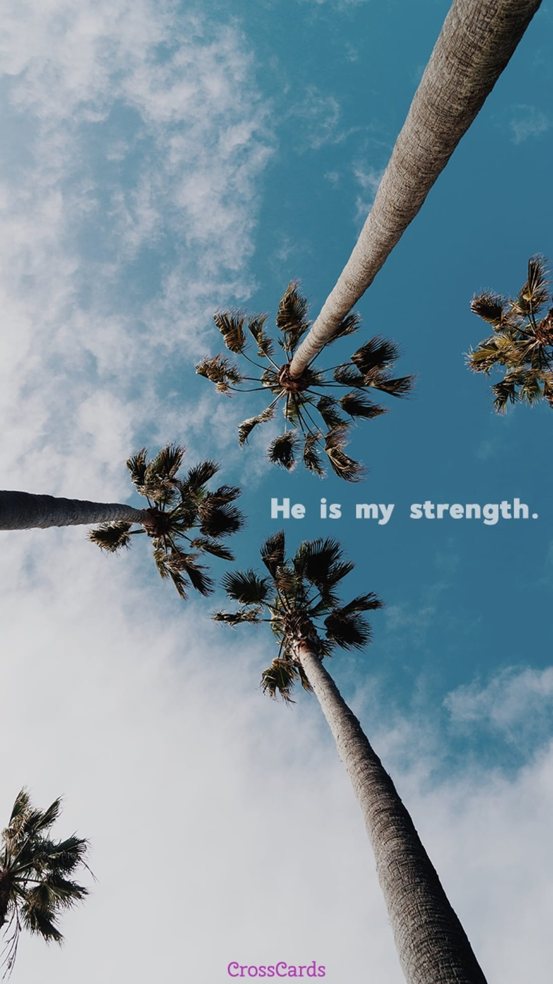 He is My Strength mobile phone wallpaper