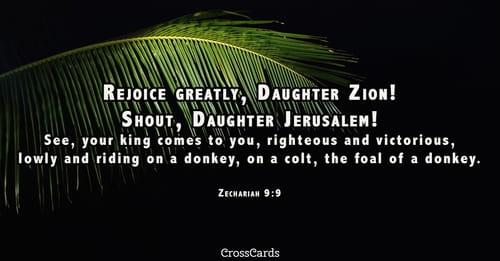 Image result for zech 9:9