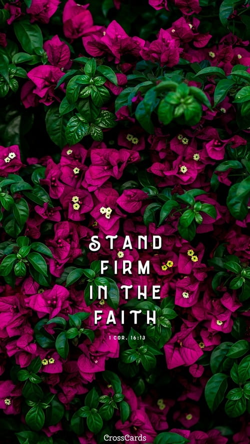Stand Firm ecard, online card