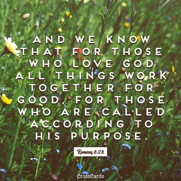 Romans 8:28 ecard, online card