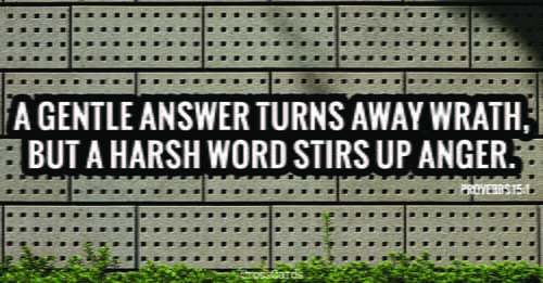 Proverbs 15:1 - A gentle answer turns away wrath, but a