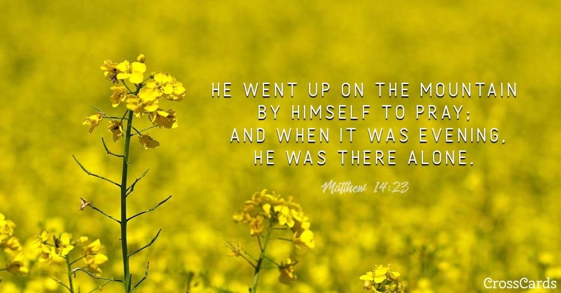 Matthew 14:23 ecard, online card