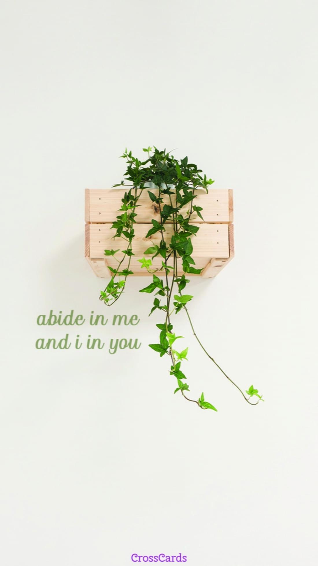 Abide ecard, online card