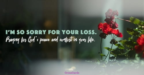 praying for you ecard