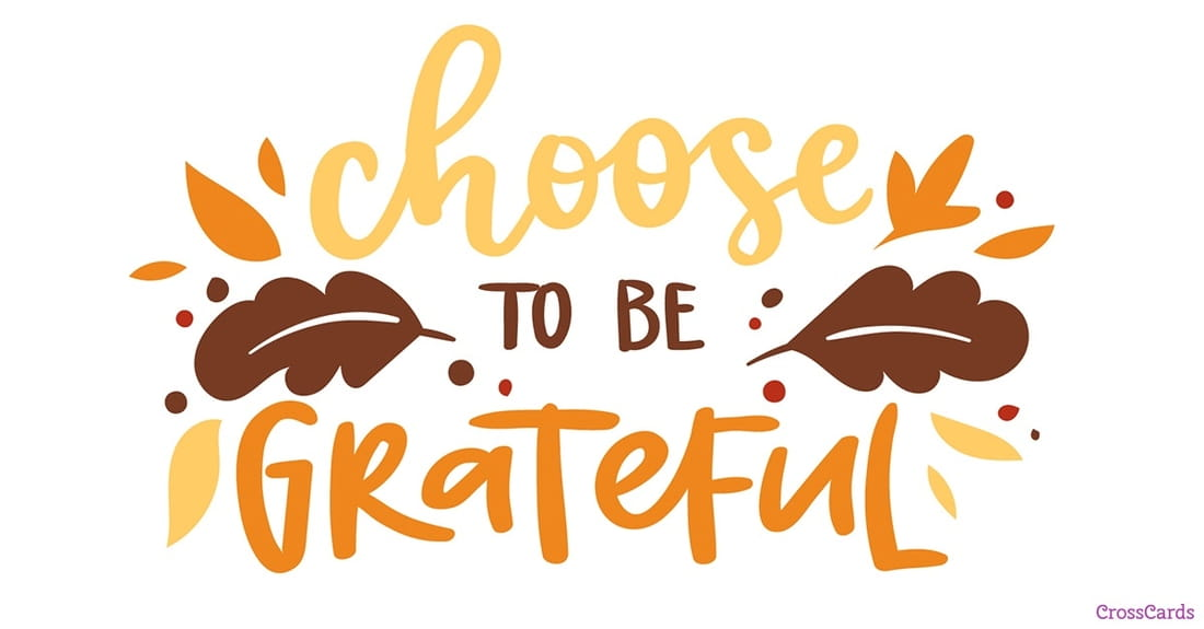 thanksgiving ecards free email greeting cards online