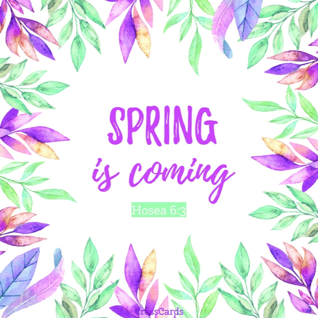 Spring Is Coming Ecard Online Card